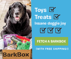 Bark Box Limited Time Offer