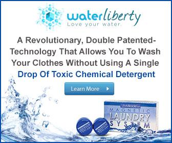 laundry detergent substitute