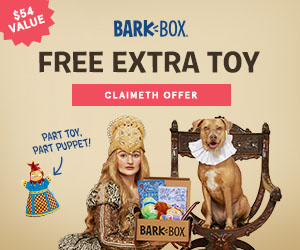 Dog double deluxe bark box deal