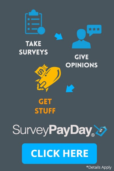 Daily pay survey