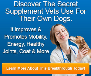 DOGgeviti - All-Natural Daily Dog Supplement