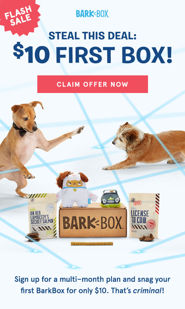 BarkBox Toys, Bags of Treats For Your Dog